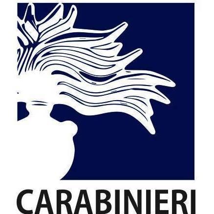 Post dalla pagina ufficiale dell'Arma dei Carabinieri